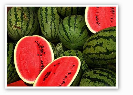 Enjoy some more watermelon this summer   Steve Evans