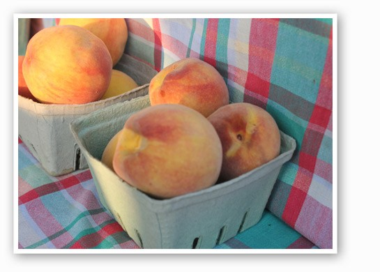Nothing says summer better than juicy peaches. | Cheryl Baehr