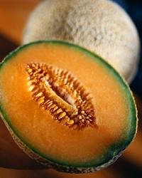 www.fruitacresfarms.com