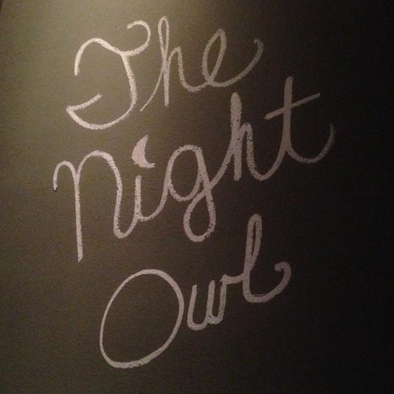 The Night Owl   Patrick J. Hurley