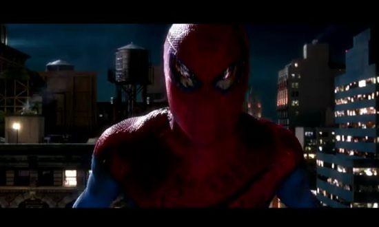 spider_an.jpg