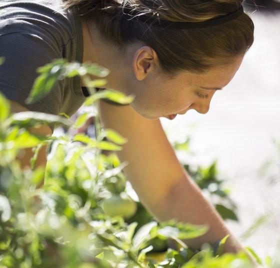 Lauren Loomis in her garden. | Jennifer Silverberg