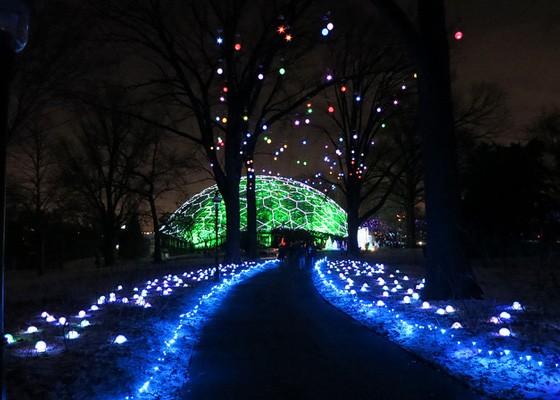 Garden Glow 2013.   Chris Yunker