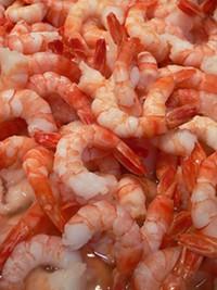 shrimp061509.jpg