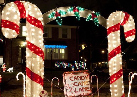 Christmas lights in St. Louis Hills.   Kholood Eid