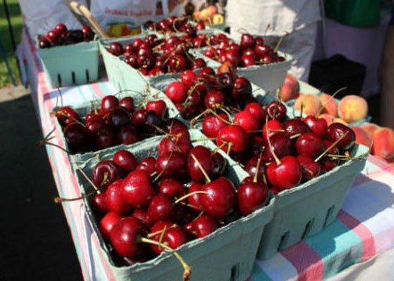 Cherries at the Tower Grove Farmers' Market. | Pat Kohm