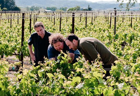 Winemaker Steve Reeder (left) with rocker Dave Matthews (at right) and Tom Gore, the Dreaming Tree's director of vineyards. - IMAGE VIA