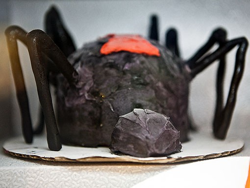 Triple chocolate black widow spider, a deadly combination. - PHOTO: STEW SMITH