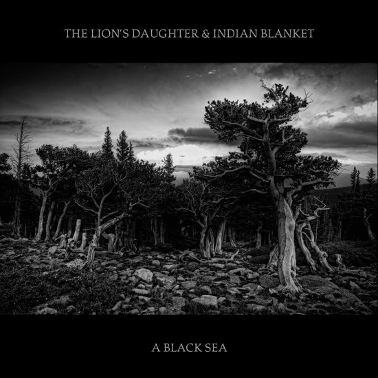 The_Lions_Daughter_Indian_lanket_A_Black_Sea.jpg