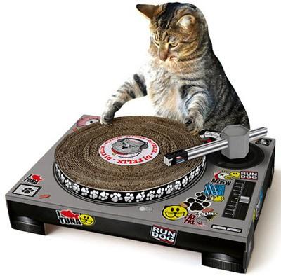 cat_dj_thumb_400x394.jpg