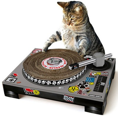 cat_dj_thumb_400x394.jpg