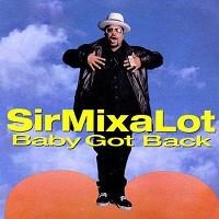 sir_mix_a_lot_baby_got_back_17vpjo6_17vpjp8.jpg