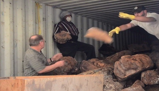 Hibdon Hardwood's employees sort through newly acquired wood. - SCREENSHOT FROM THE VIDEO.
