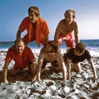 THE BEACH BOYS. NOT PICTURED: ADAM LEVINE.