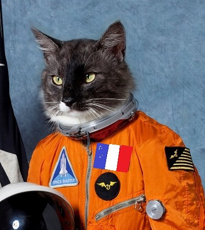 cat_astronaut.jpg