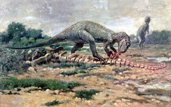 Allosaurus4_thumb_565x355.jpg
