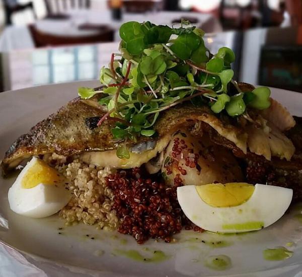 Chilled Potato and Salmon Salad with Microgreens at Mango