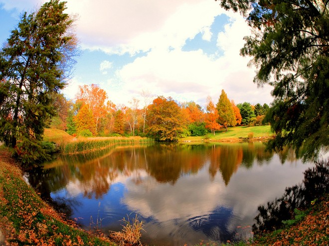The grounds of the St. Louis Country Club, on which the Hermanns reside. - PHOTO COURTESY OF FLICKR/ BOB BAWELL