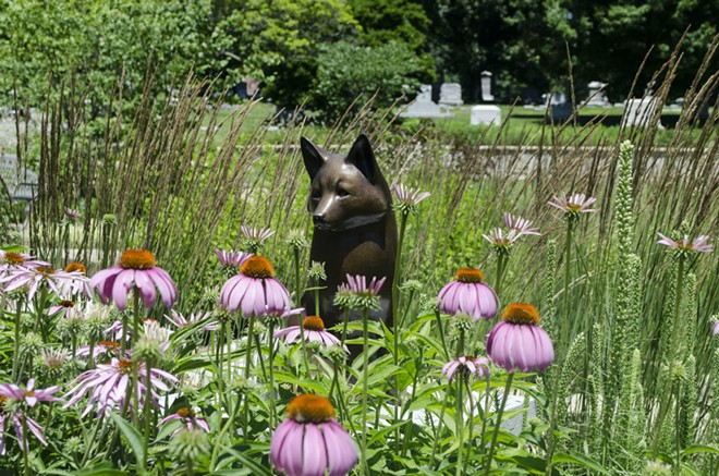 A fox guards over a family plot in the Wildwood Valley Garden. Family plots in the garden can host anywhere from six to sixteen cremations. - KAVAHN MANSOURI