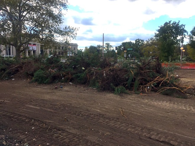 Construction crews left this mess of roots and branches behind after decimating a Lindell couple's high hedges. - PHOTO COURTESY OF STEPHANIE ROBERTS