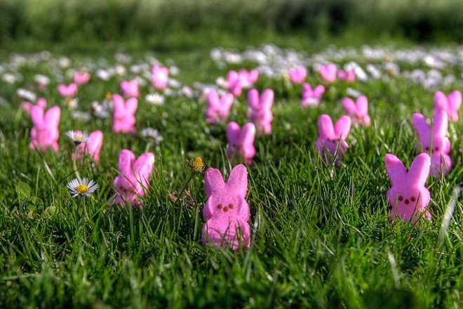 There's Peeps in them thar hills. - FLICKR/MAX ELMAN