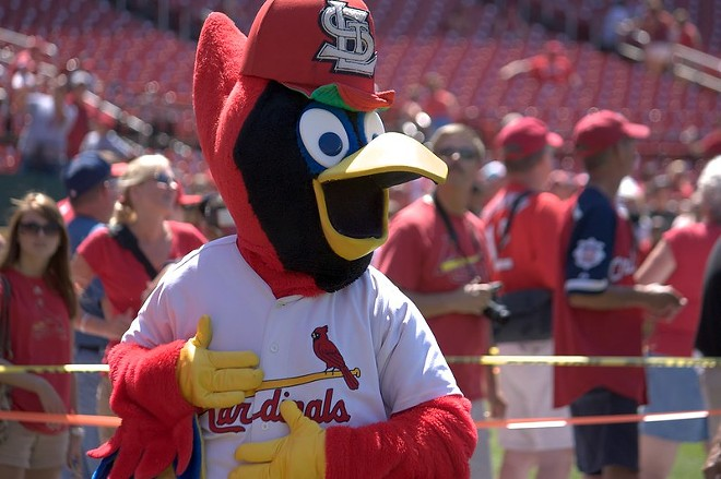 Even Fredbird is shocked. - TODD AWBREY / FLICKR