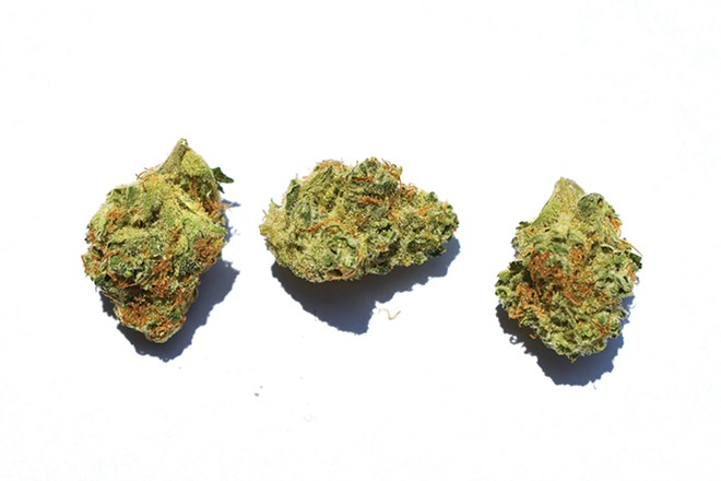 Sour Tangie was budtender recommended and Tommy approved. - THOMAS K. CHIMCHARDS