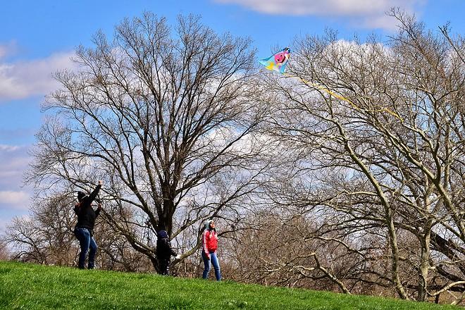 People flying a kite in Marquette Park in Dutchtown. -  DUTCHTOWN ST. LOUIS / FLICKR
