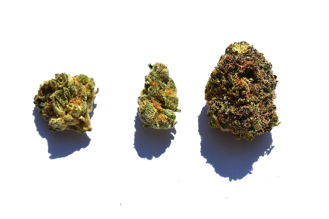 From left to right: Grease Monkey, Mama's Pie, Purple Sunset. - TOMMY CHIMS