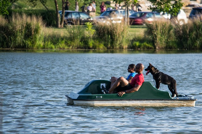 You can take your dog on a paddleboat — or on more than 80 tourist destinations across the city. - PHOTO COURTESY OF FLICKR/STEVE KRAVE