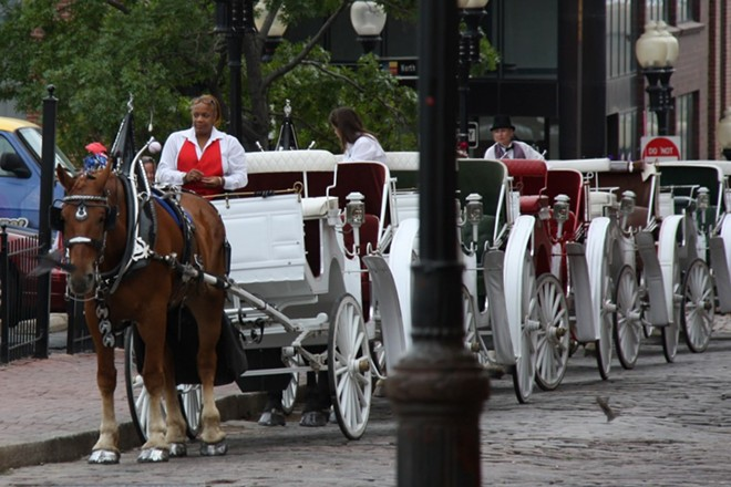 Horse-drawn carriages would be banned under a new proposal from Alderman Joe Vaccaro. - PHOTO COURTESY OF FLICKR/ERIN