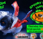 Spooky Poochies Dog Costume Contest Yappy Hour