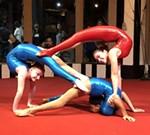Circus Harmony: Accelerando