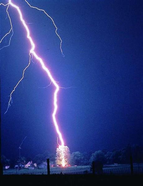 lightning_strike_tree.jpg