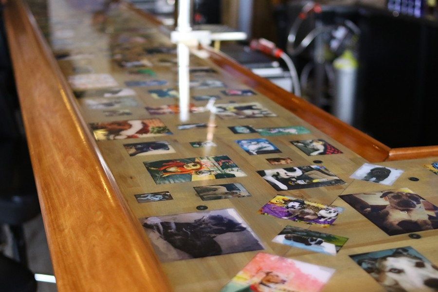 The bar is covered in photos of dogs sent in by customers. Since it is covered in resin, they are no longer accepting photos. - CHELSEA NEULING