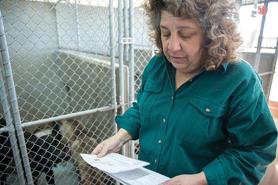 Beth Vesco-Mock, pictured here at her previous shelter director job New Mexico, came to St. Louis in 2017 with high hopes. She was fired after 7 months. - JOSH BACHMAN/LAS CRUCES SUN-NEWS