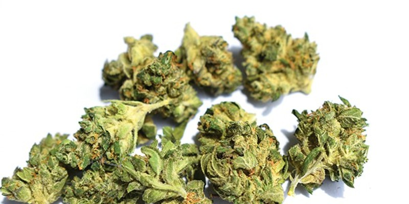 Curious about discounts on your favorite strains? You may be out of luck.