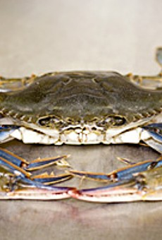 Crab is front and center in several of McCormick & Schmick's dishes.