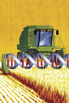 The Monsanto Menace: The feds see no evil as a belligerent strongman seeks control of America's food supply