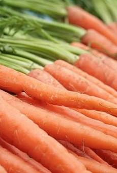 EarthDance Seeks Freshman Farmers For 2012 Apprenticeships