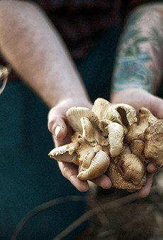 Foraging Their Way Through Missouri, Bulrush Chefs Rob Connoley and Justin Bell Say Goodbye Grocery