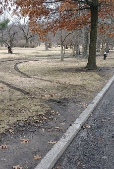 The only sign of the missing van was a set of tire tracks in Tower Grove Park.