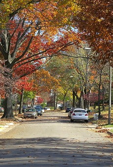 Richmond Heights in the fall: Could anything be more pretty?