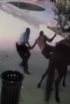 VIDEO: Man on Horseback Eludes St. Louis Cop in Ballpark Village