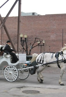 St. Louis is Trying to Intervene in MTC Horse Carriage Lawsuit