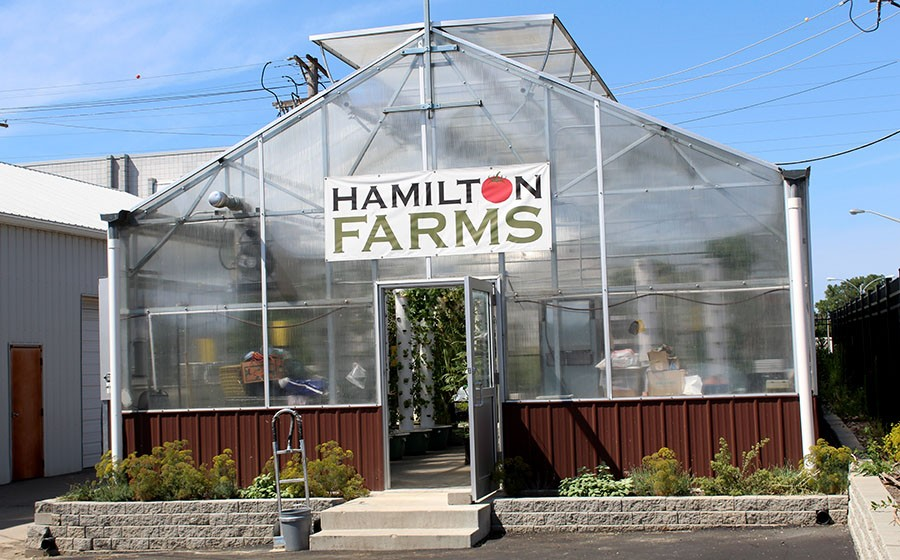 Their greenhouse is located in the back parking lot of the steakhouse and brewing company. - LEXIE MILLER