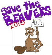 COURTESY SAVE THE BEAVERS