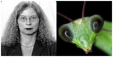 Separated at birth? Which one is Barb Geisman, and which is the praying mantis?
