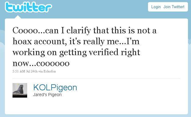 pigeontweet3.JPG