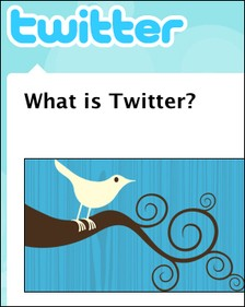 twitterscreencap_thumb_225x281.jpg